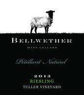 Bellwether Petillant Naturel 2013